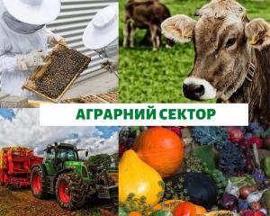 Аграрний сектор Сфери виробництва і професії
